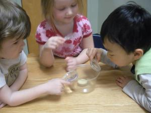 Three and four year olds exploring science